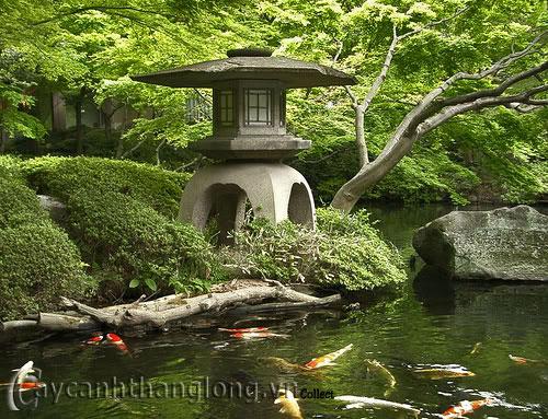 Mẫu vườn Phương Đông 19