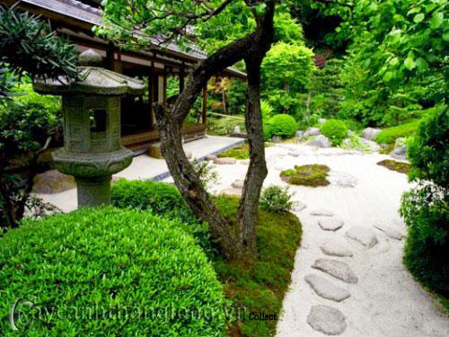 Mẫu vườn Phương Đông 22