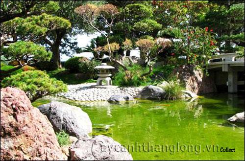 Mẫu vườn Phương Đông 24