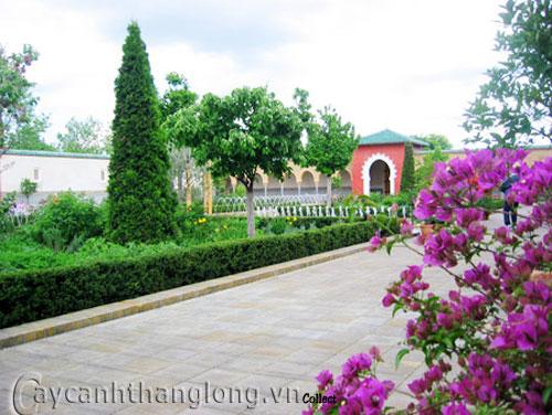 Mẫu vườn tổng hợp 2