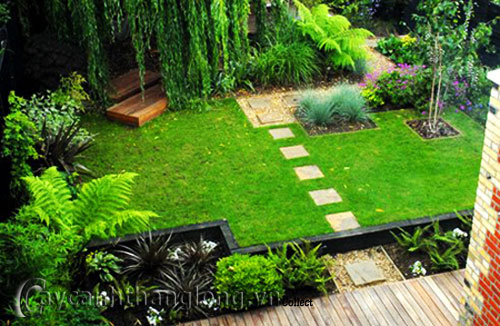 Mẫu vườn tổng hợp 7
