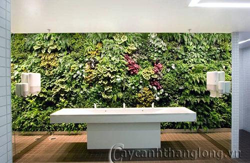 Tường sinh thái nội thất