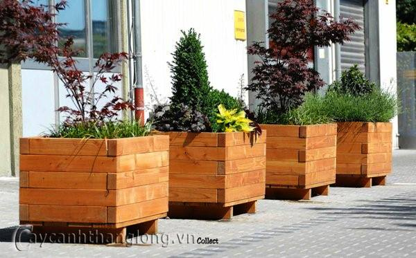 Chậu gỗ trồng hoa cây cảnh 90