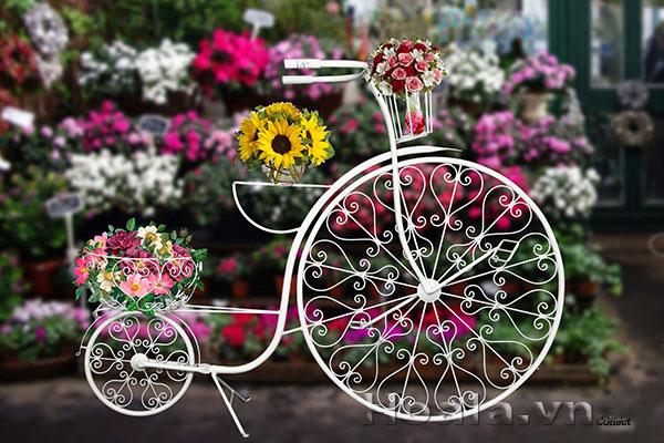 kệ sắt xe đạp